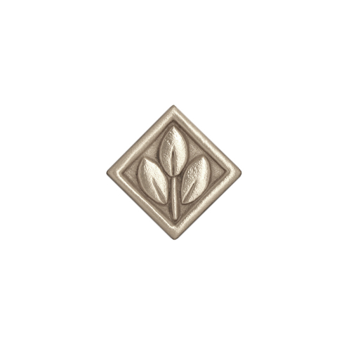 Bronze corner accent trim Silver bright